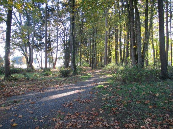 Jim Bundy Park Path